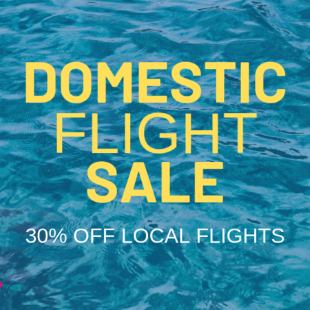 domestic flight deal